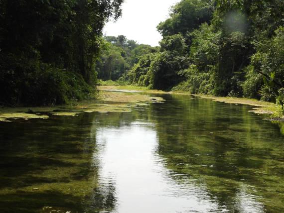 rio são benedito lugar de pesca na Amazônia