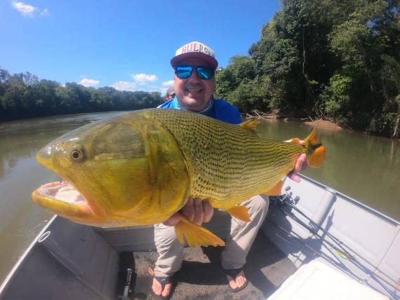 pescador com peixe dourado fisgado na pescaria no pantanal