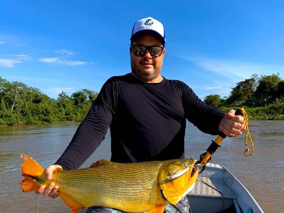 peixe dourado fisgado no rio Cuiabá na pescaria no pantanal