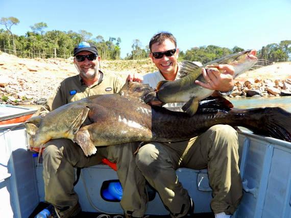 jau fisgado no rio teles pires em pesca na Amazônia