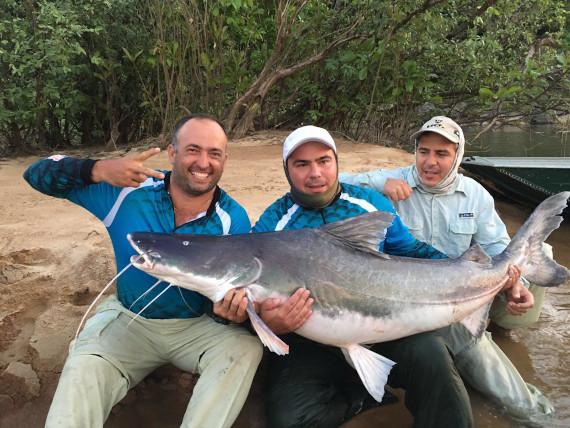 peixe piraiba fisgado da pesca na Amazônia