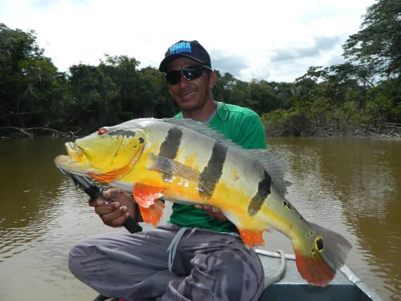 pacotes de pesca no rio padaueri